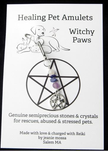 Picture of Witchy Paws Healing Pet Amulet