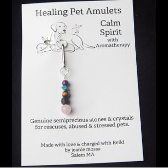 Practical Magic Salem  Four Paws Healing Pet Amulets