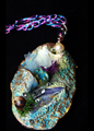 Picture of Undine Dreams ARTifact Necklace #11