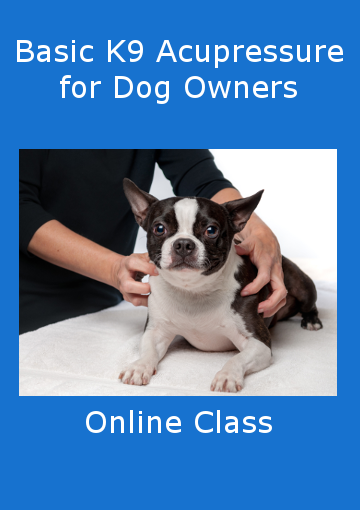 Picture of Basic Canine Acupressure for Dog Owners Online Class